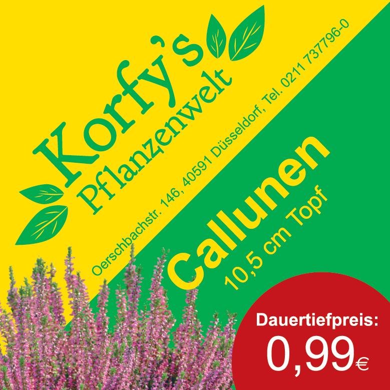 Dauertiefpreis-Callunen_2.png
