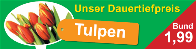 Tulpen.PNG.png